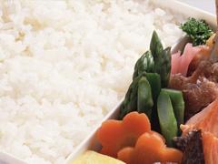 お米の品種(新種編)の画像