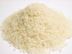 世界のお米生産事情の画像